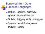borrowed from other european languages