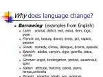 why does language change