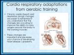 cardio respiratory adaptations from aerobic training
