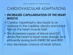 chronic adaptations to aerobic training cardiovascular adaptations2