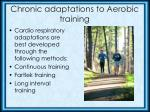 chronic adaptations to aerobic training3