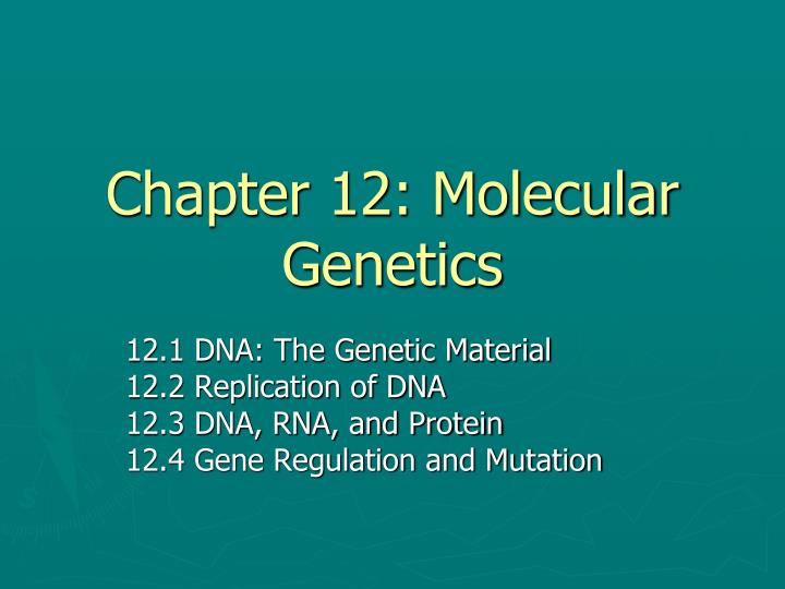 chapter 12 molecular genetics n.