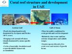 coral reef structure and development in uae