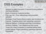 dss examples