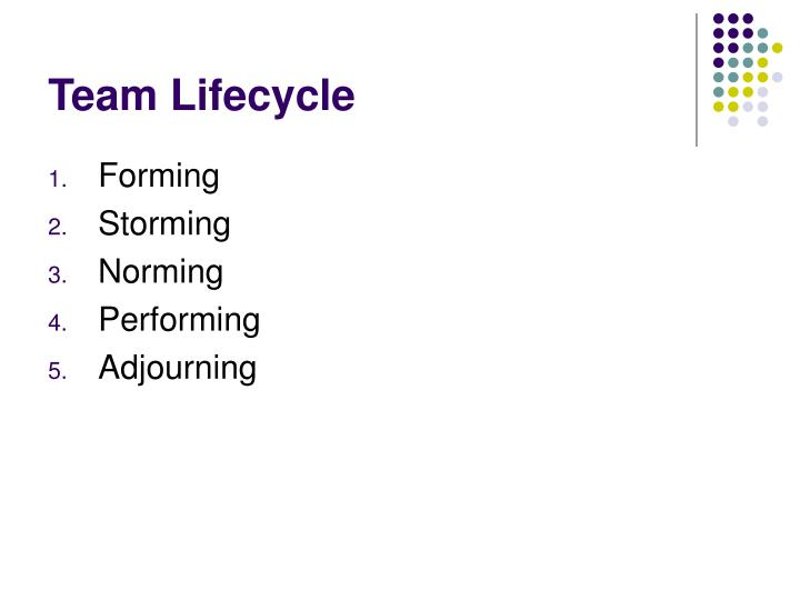 team lifecycle n.