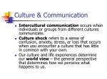 culture communication1