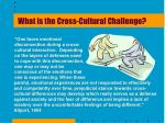 what is the cross cultural challenge