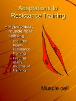 adaptations to resistance training2