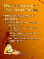 muscular response to resistance training1