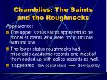 chambliss the saints and the roughnecks