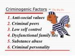 criminogenic factors the big six