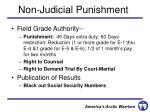 non judicial punishment1