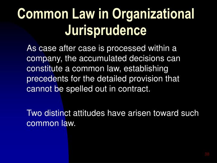 As case after case is processed within a company, the accumulated decisions can constitute a common law, establishing precedents for the detailed provision that cannot be spelled out in contract.