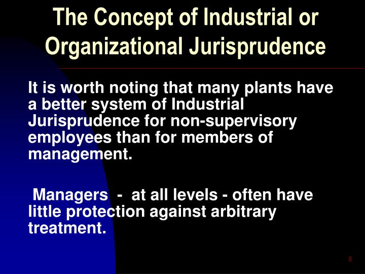 The Concept of Industrial or Organizational Jurisprudence