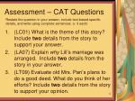 assessment cat questions
