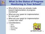 what is the status of progress monitoring in your school