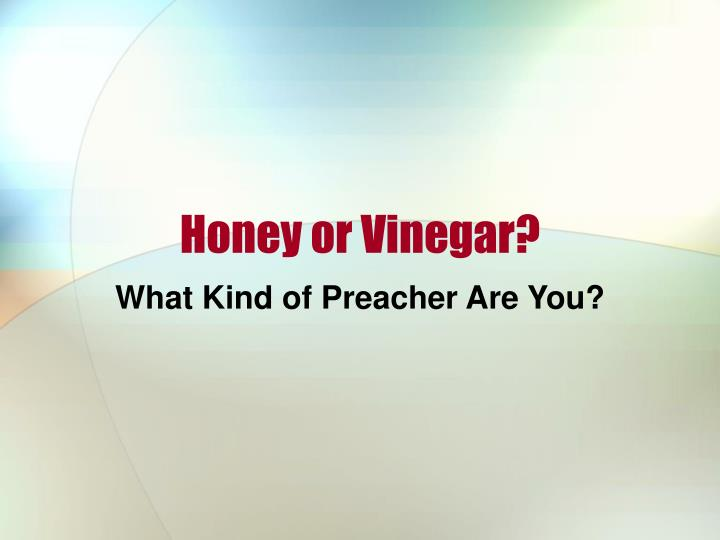 honey or vinegar n.