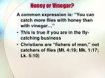 honey or vinegar1