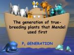 the generation of true breeding plants that mendel used first