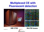 multiplexed ce with fluorescent detection