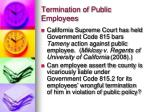 termination of public employees1