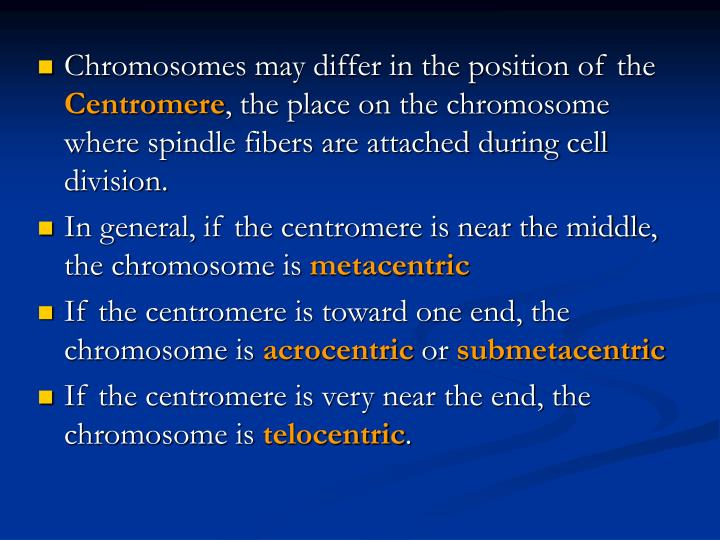 Chromosomes may differ in the position of the