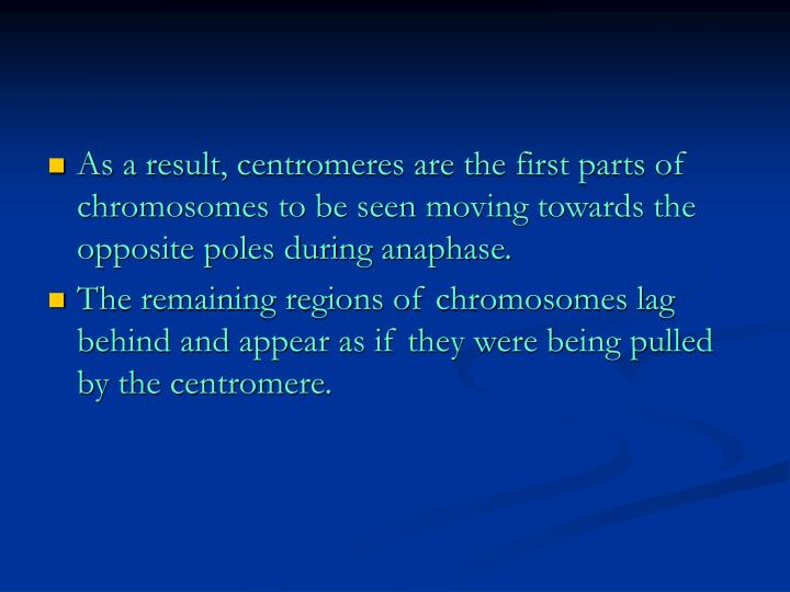 As a result, centromeres are the first parts of chromosomes to be seen moving towards the opposite poles during anaphase.