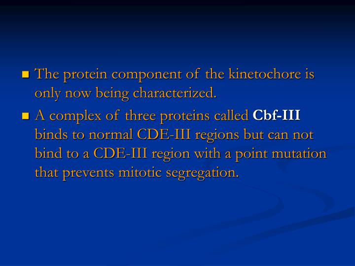 The protein component of the kinetochore is only now being characterized.