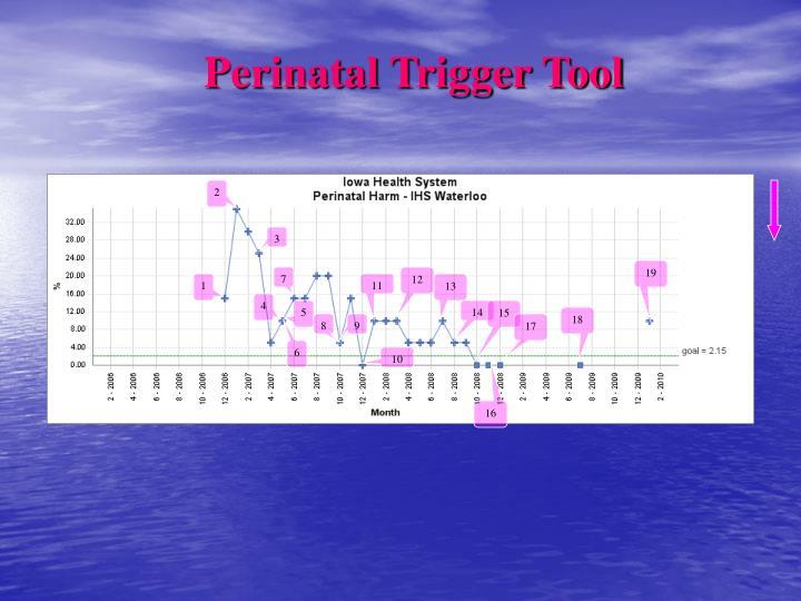 Perinatal Trigger Tool
