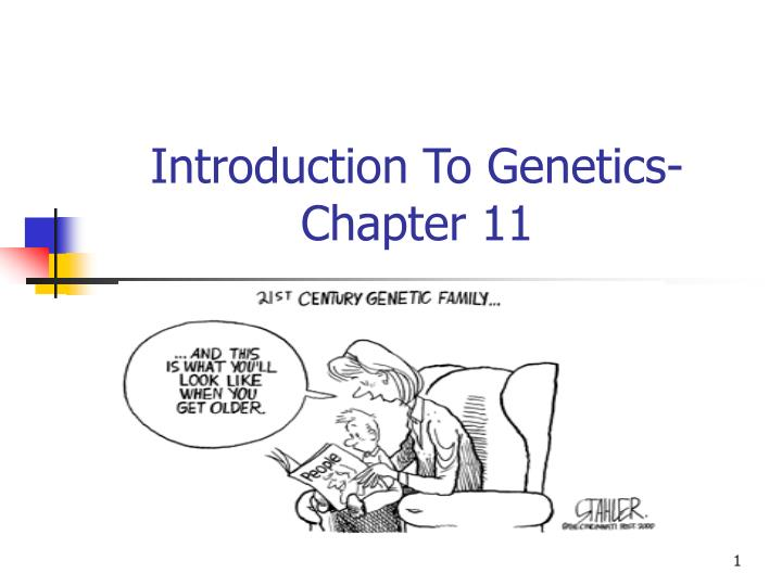 introduction to genetics chapter 11 n.