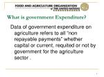 what is government expenditure