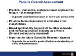 panel s overall assessment