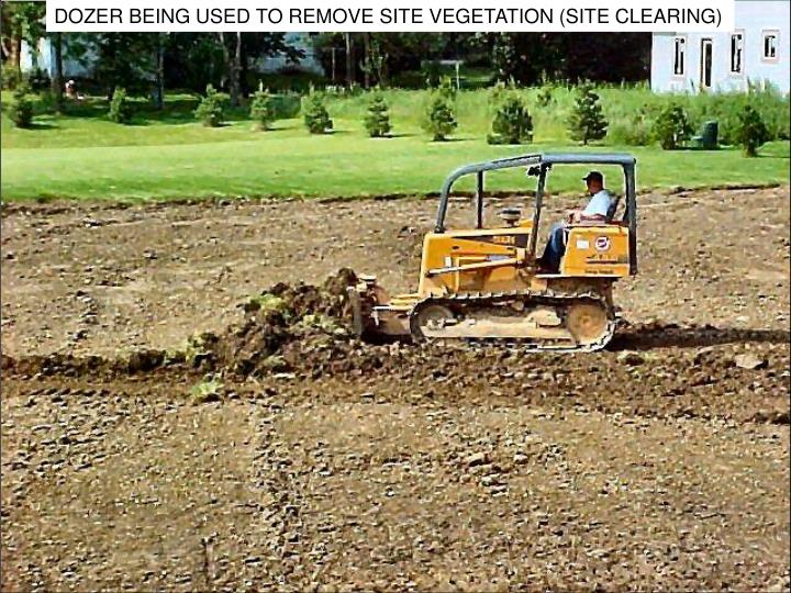 DOZER BEING USED TO REMOVE SITE VEGETATION (SITE CLEARING)