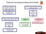 pastoral counseling behavioral health