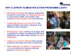 why a leprosy elimination action programme leap