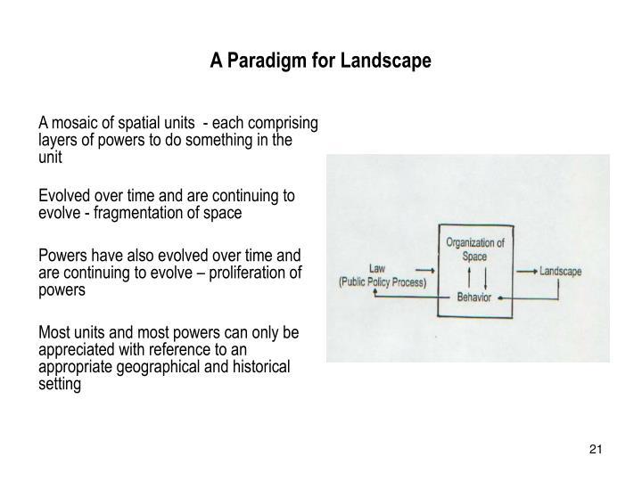 A Paradigm for Landscape