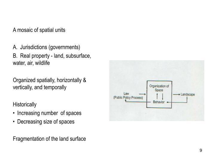 A mosaic of spatial units