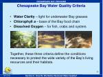 chesapeake bay water quality criteria