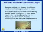 many water habitats still lack sufficient oxygen