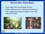 restored water quality means