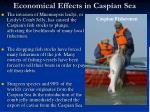 economical effects in caspian sea