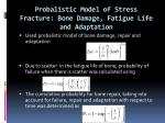 probalistic model of stress fracture bone damage fatigue life and adaptation