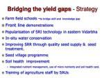 bridging the yield gaps strategy