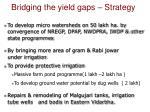 bridging the yield gaps strategy1