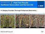 field test results sunflower desiccation and harvest aid