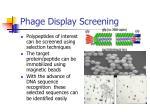 phage display screening