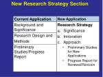 new research strategy section