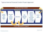typical internal financial control project approach
