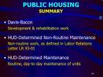 public housing summary