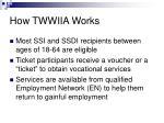 how twwiia works
